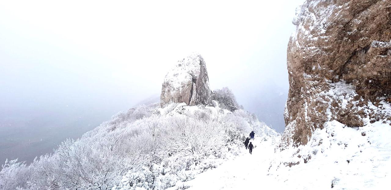 CASA-RURAL-EL-HAYEDO-DEL-LEÓN-DORMIDO-MARAÑÓN-NAVARRA-SAN-TIRSO-IV